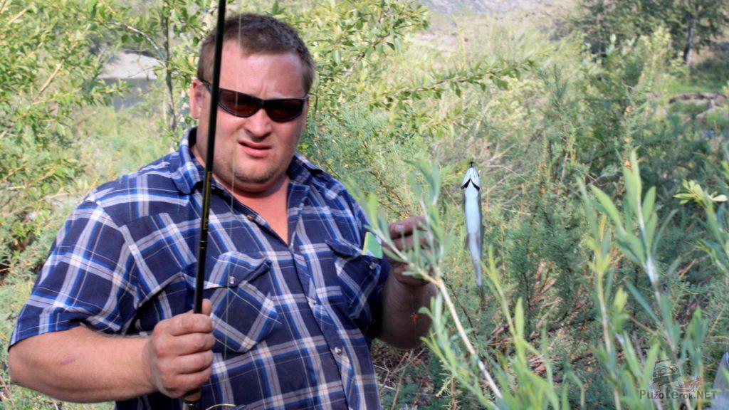 Рыбалка на Алтае. Первый Хариус пойман в реке Чулышман