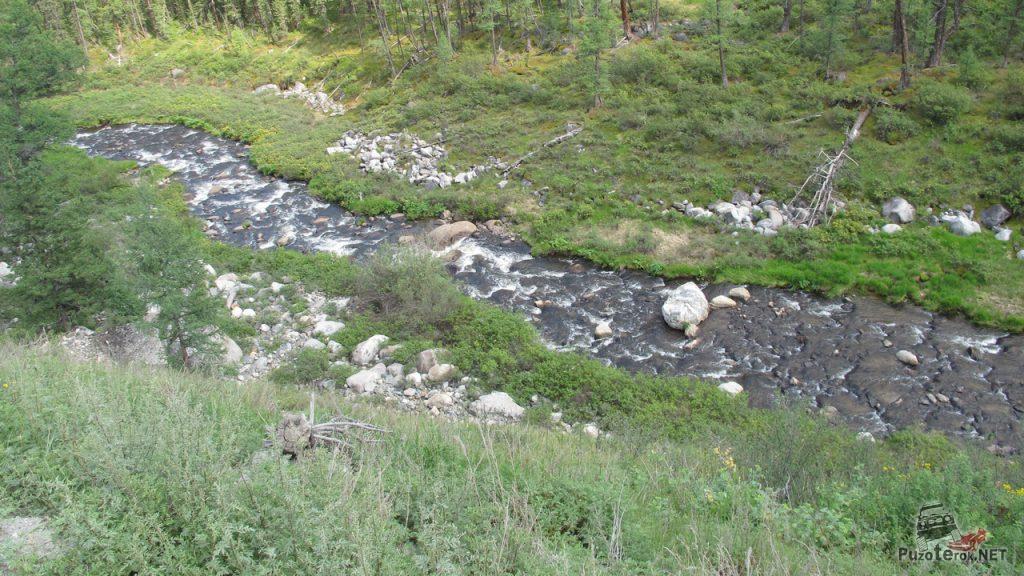 Горный ручей на Алтае