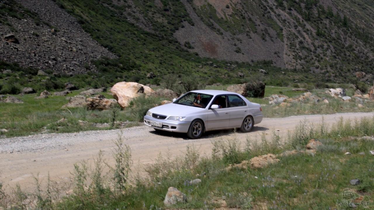 Легковые автомобили в долине реки Чулышман