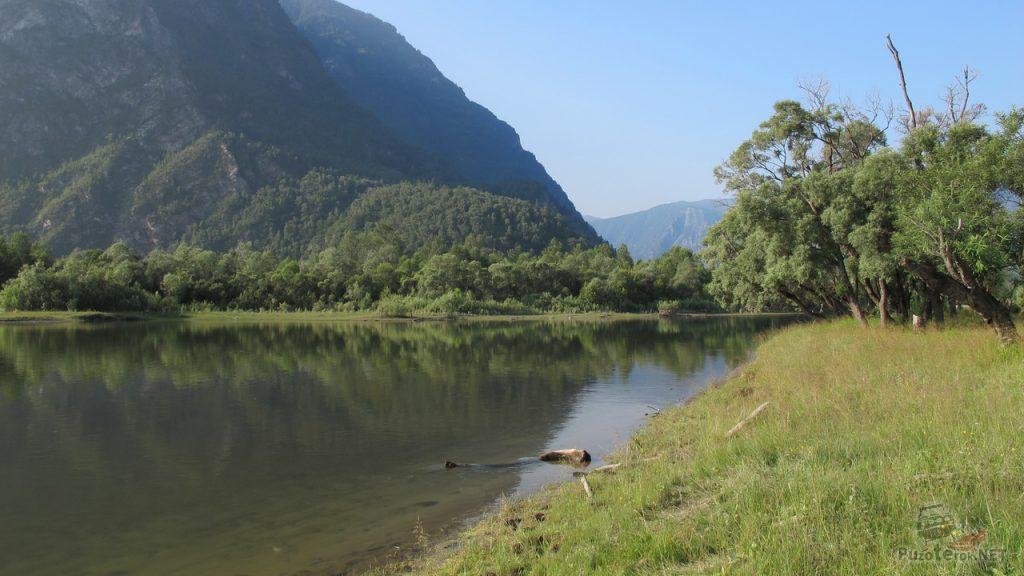 Река Чулышман в низовьях уже спокойная