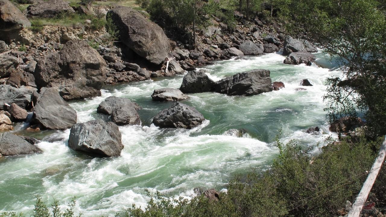 Бурное течение реки Чулышман в гористой части русла