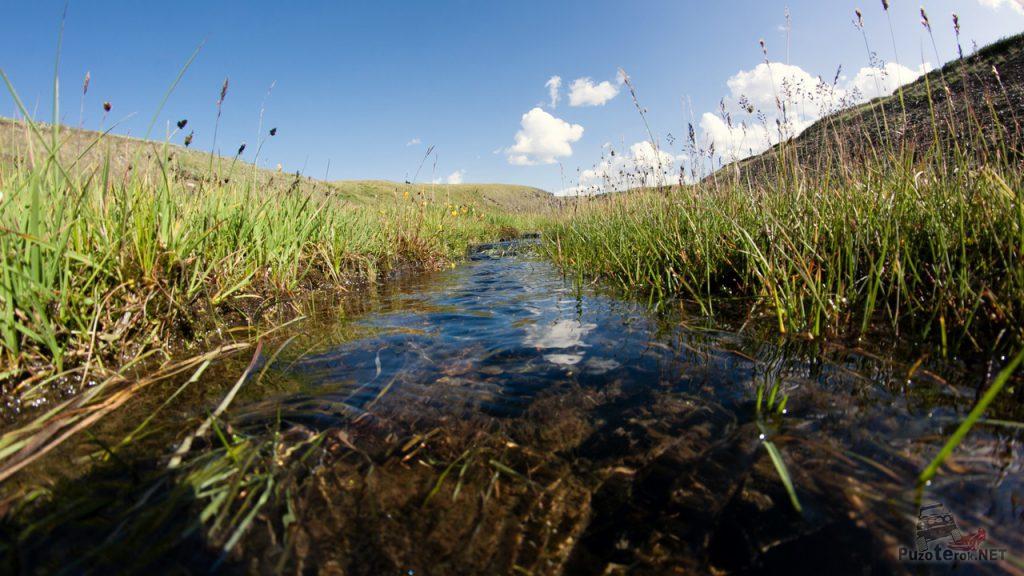 Красивый горный ручей на Укоке