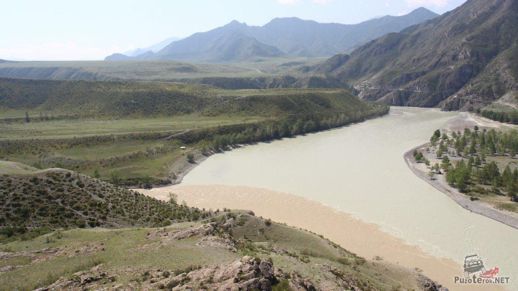 Чуя и Катунь, видно грязные воды Чуи