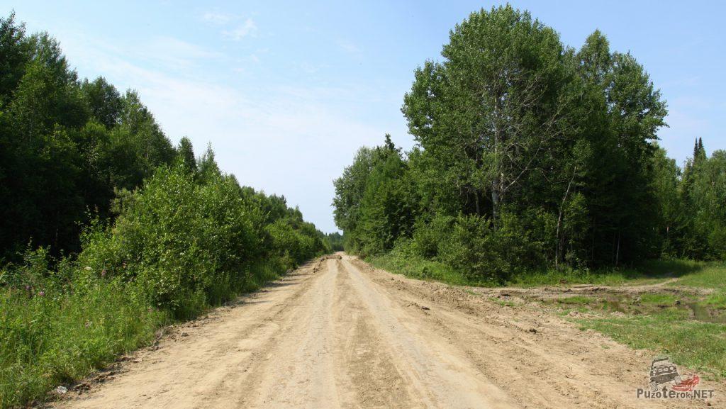 Грунтовые дороги тюменской области