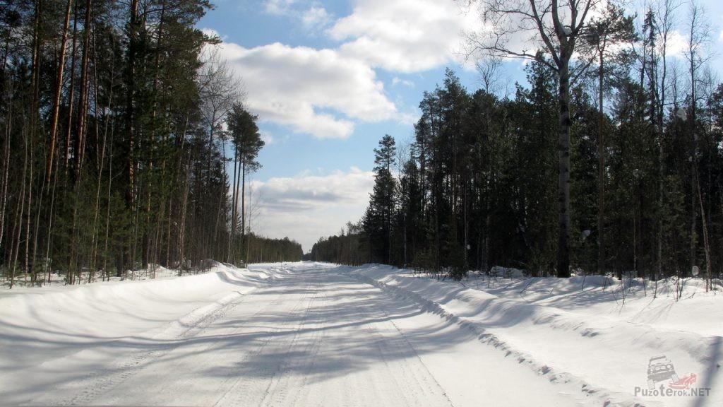 Дорога по зимнику томской области