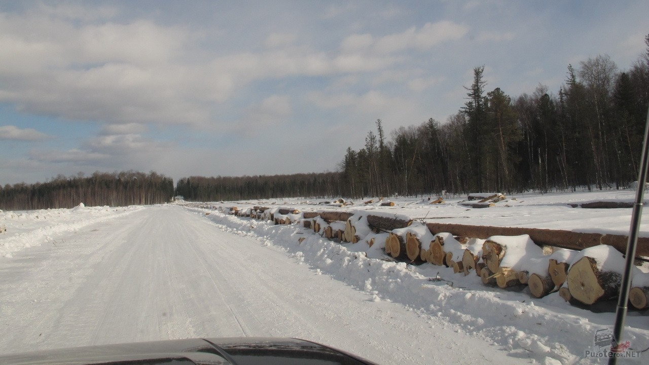 Дорога со Стрежевого на Каргасок (Томск)