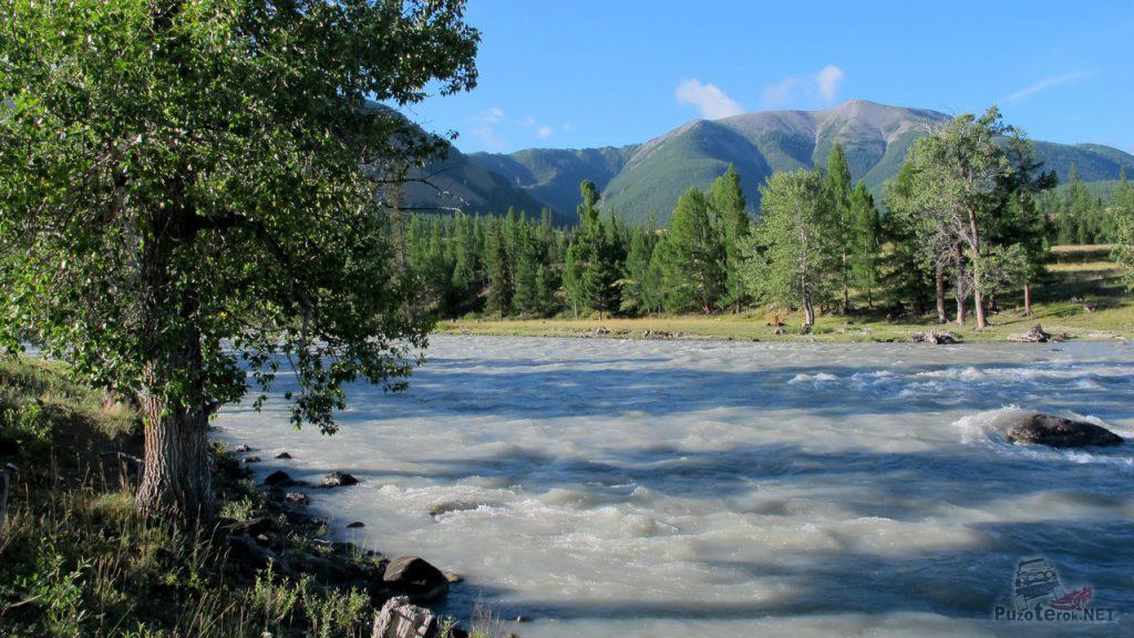 Река Чуя, окрестности Курая