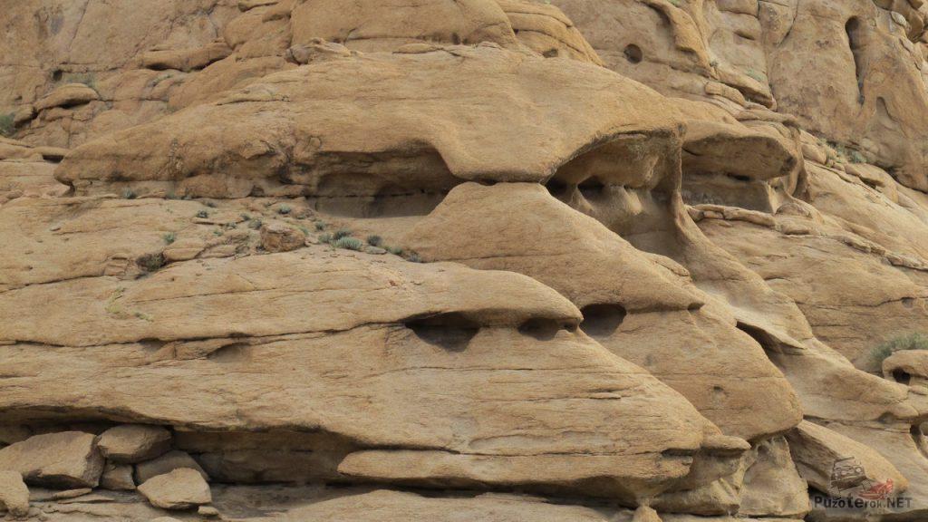 Скалы напоминают череп обезьяны