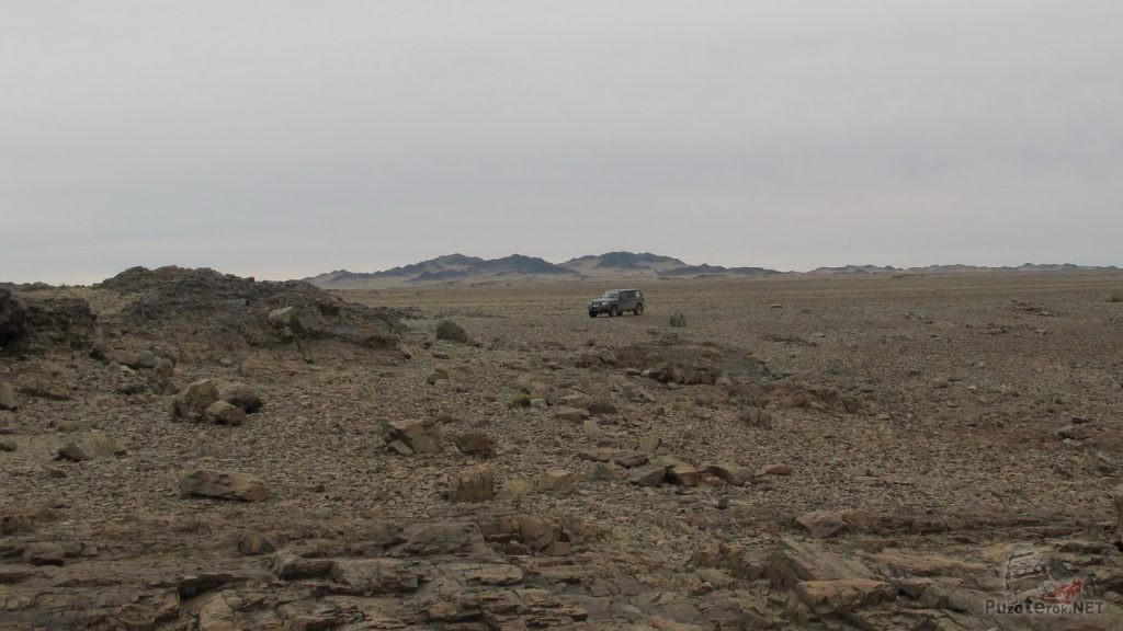 Местность, усеянная скальником