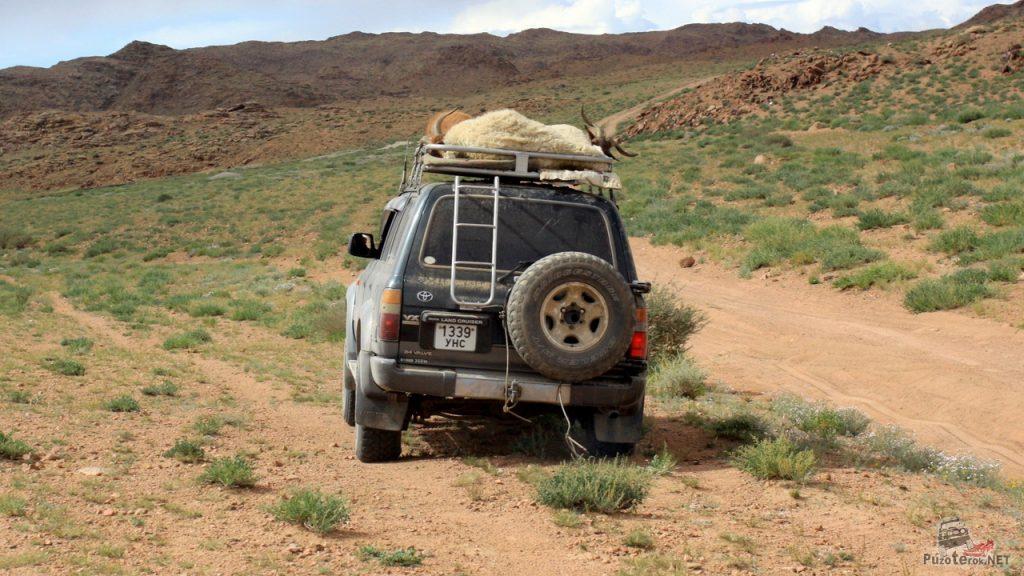 Использование экспедиционного багажника в Монголии