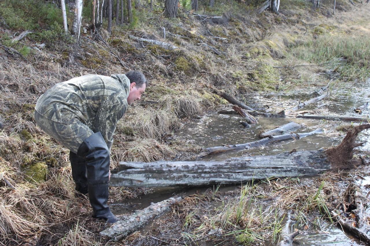 строим лежневку на болоте