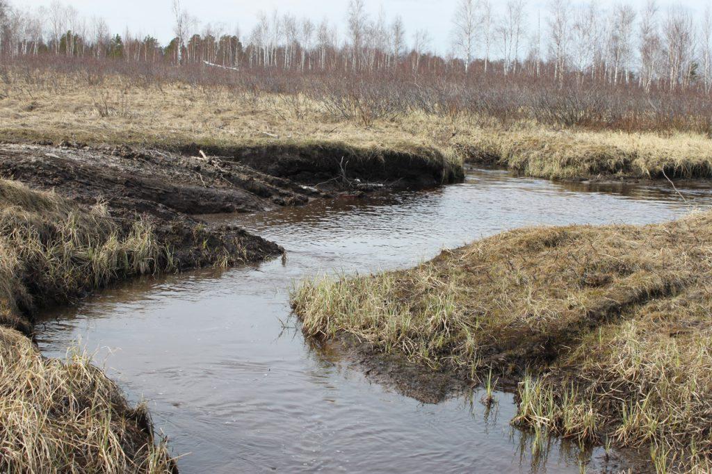Ручей в сургутском районе