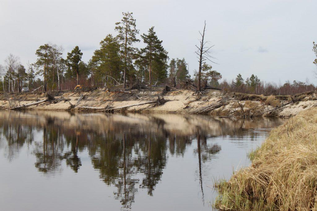 Река моховая