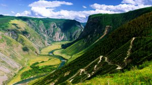 Серпантин среди зелени горного Алтая