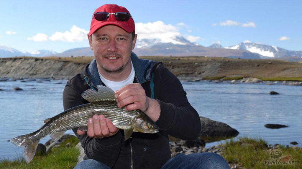 Ловля хариуса в Монголии. Рыболовные туры.