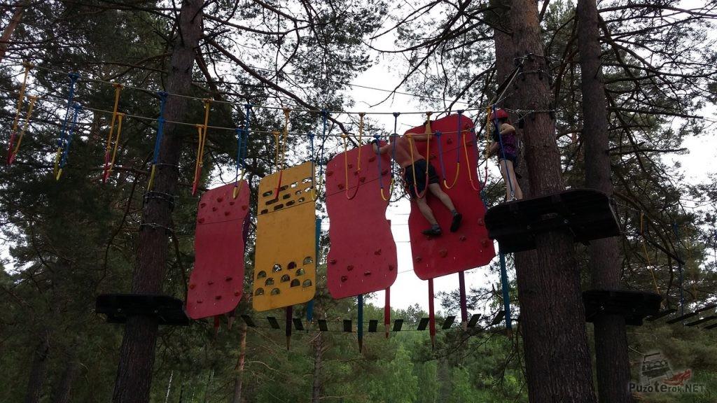 Аттракцион с натянутыми на деревьях канатами