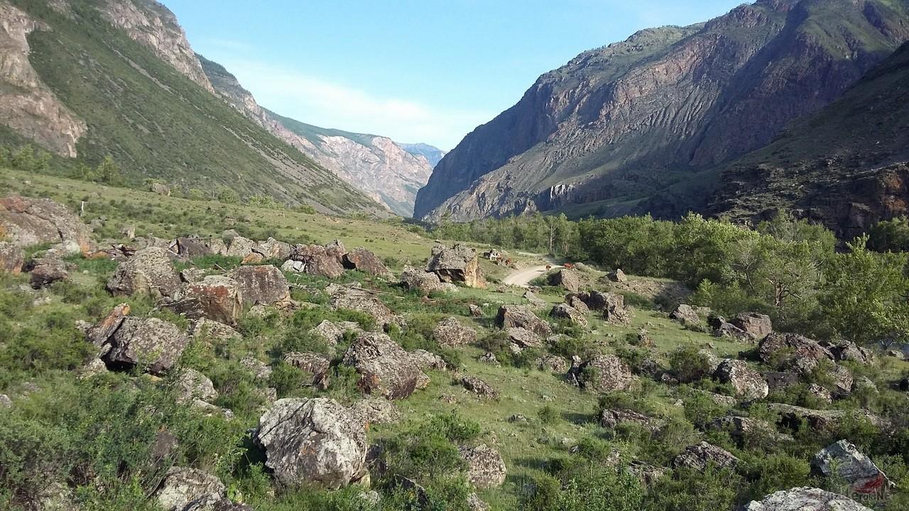 Курумник в долине реки Чулышман