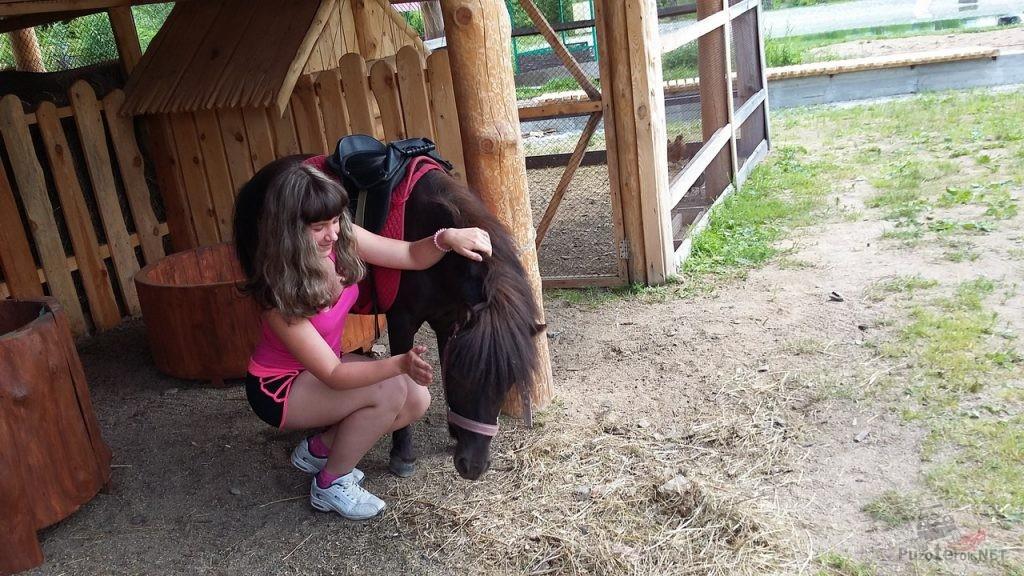 Татьяна гладит пони