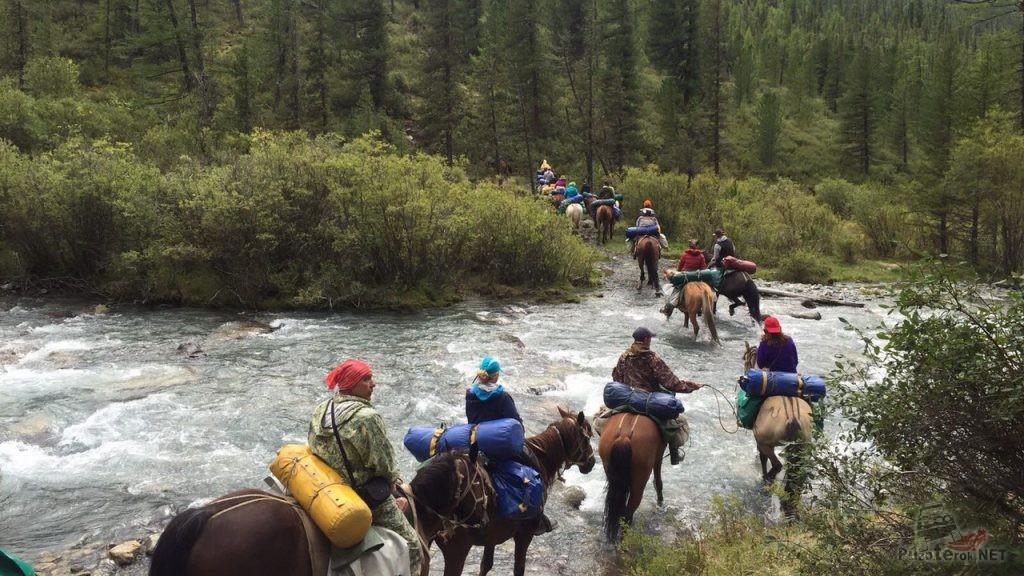 Путешествие в Горном Алтае на лошадях