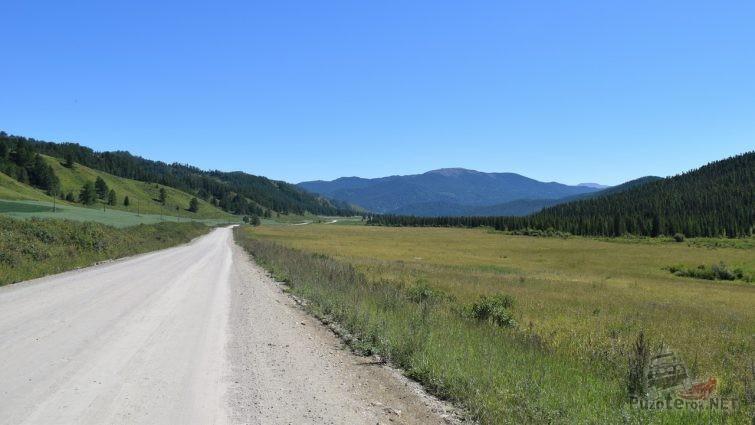 Дорога по Горному Алтаю