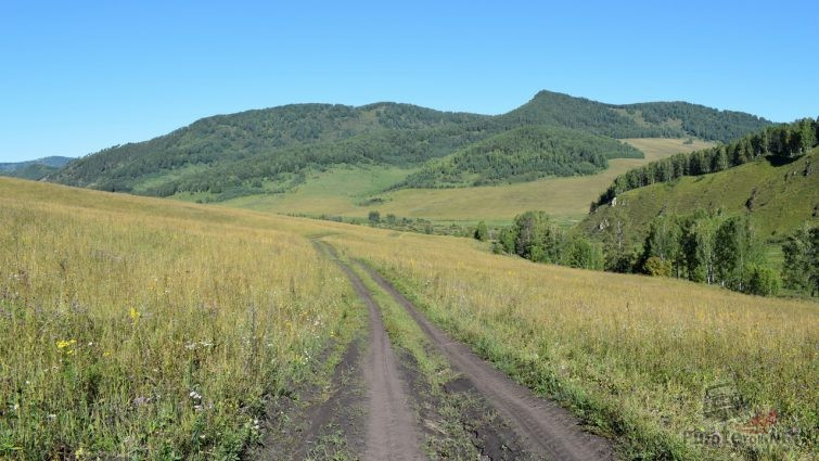 Грунтовая дорога на Алтае