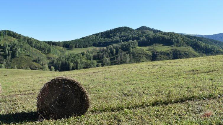 Покос, горы, тюк сена