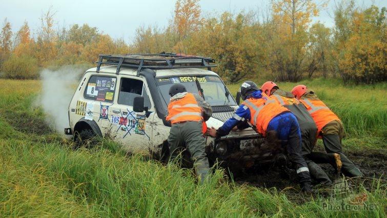 Четверо человек толкают Ниву из грязи