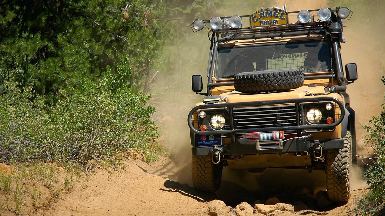 Land Rover Defender (60 фото)