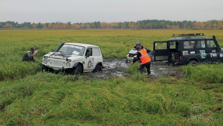 УАЗ и Нива застряли в болоте
