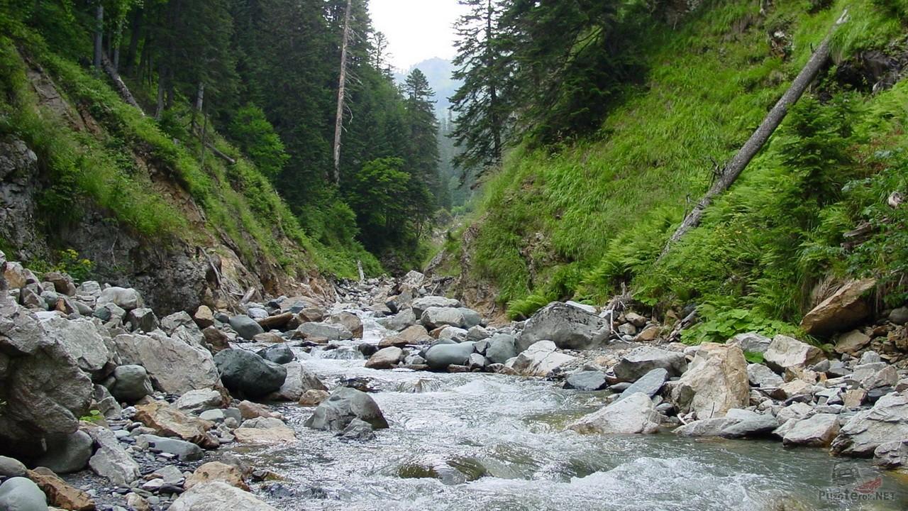 Горная река в ущелье Дамхурц