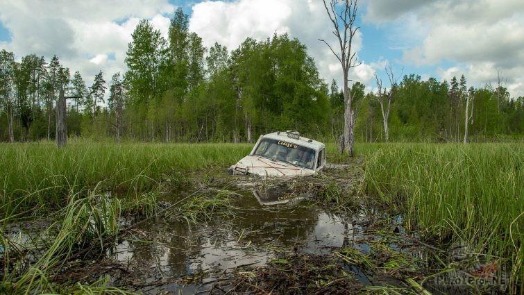 Нива утонула в болоте на Ладоге