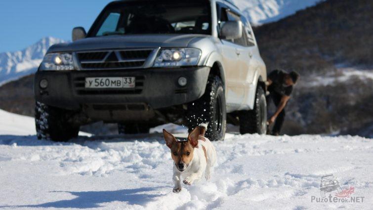 Ричи радуется, бегает по горам в Осетии