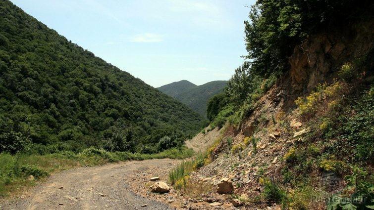 Горная грунтовая дорога в заповеднике Малый Утриш