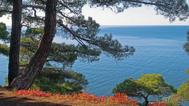 Море в Краснодарском крае