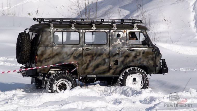 Пятнистая подготовленная буханка из Якутии на зимних соревнованиях