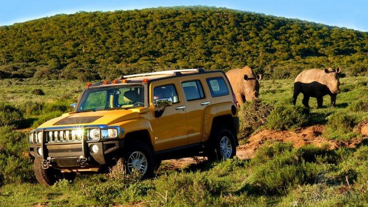 Жёлный хаммер в африканской саванне