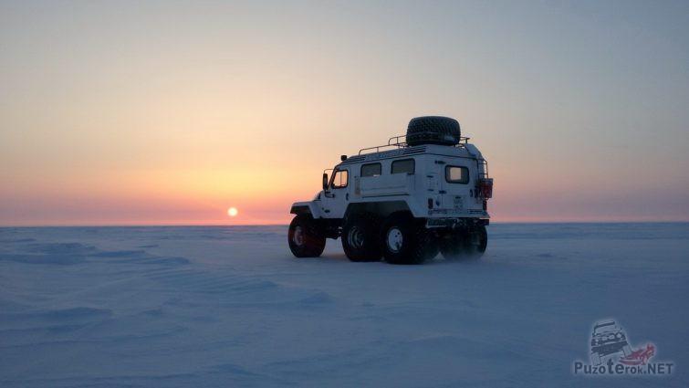 Арктический вездеход Трэкол едет по тундре