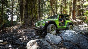 Зелёный джип едет по камням в лесу