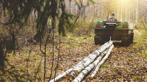 Использование вездехода для заготовки дров в лесу