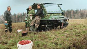 Ягодники на поляне с собранным урожаем возле вездехода
