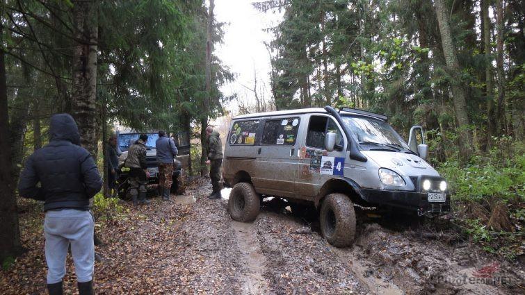 Экспедиция остановилась на дороге в лесу