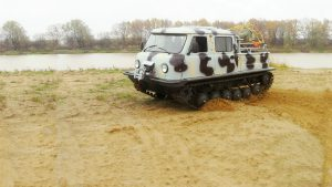 Серо-чёрный болотоход на песке у реки