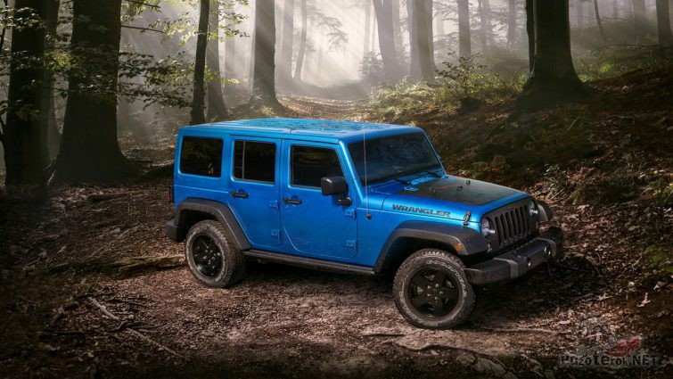 Синий Jeep Wrangler в лесу на бездорожье