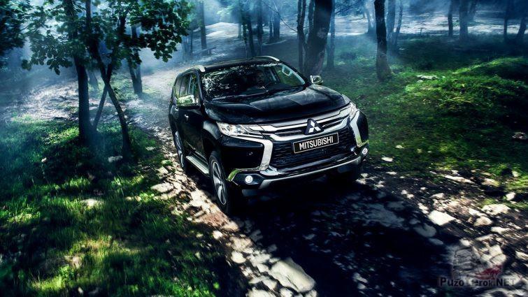 Автомобиль едет по загадочному лесу