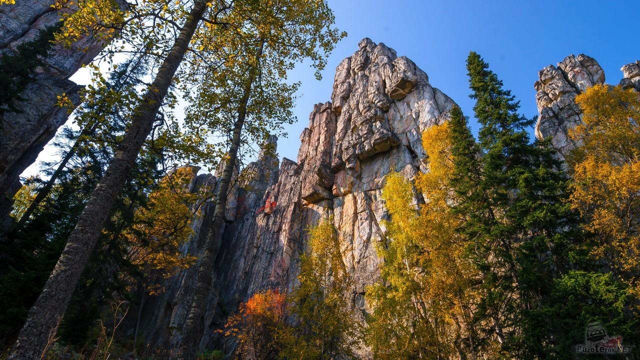 Деревья и отвесная скала