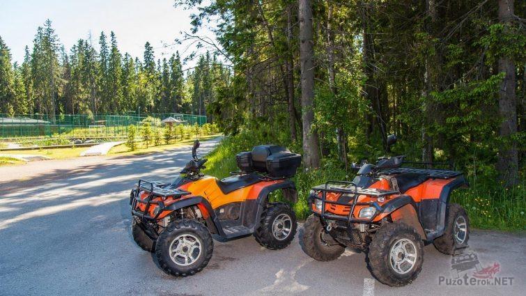 Два квадроцикла возле леса