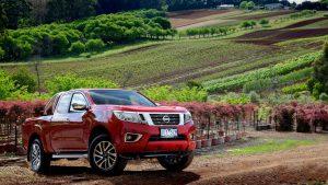 Красный Nissan Navara на фоне природы