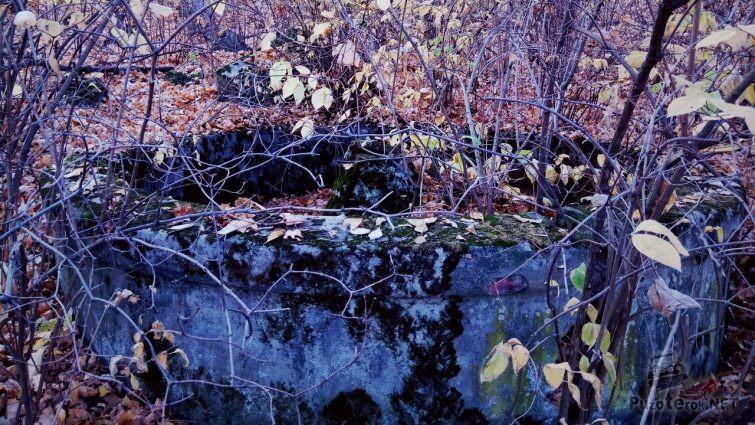 Остатки старого фонтана