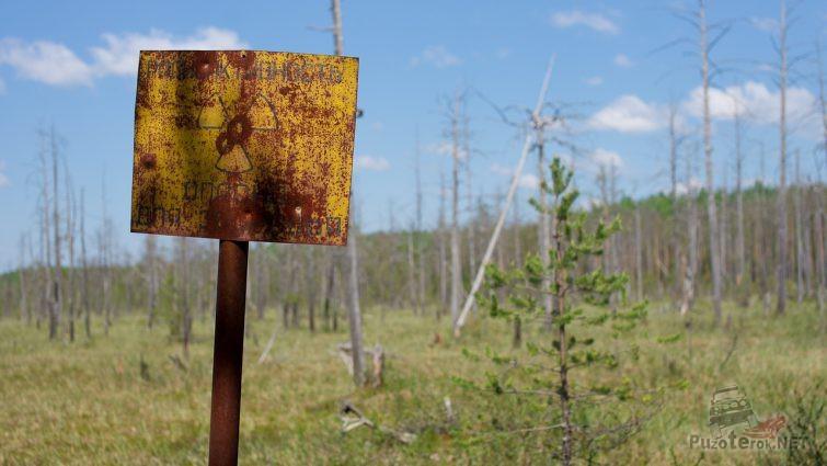 Знак радиационной опасности на болоте вблизи озера