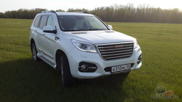 Белый Great Wall Haval на траве